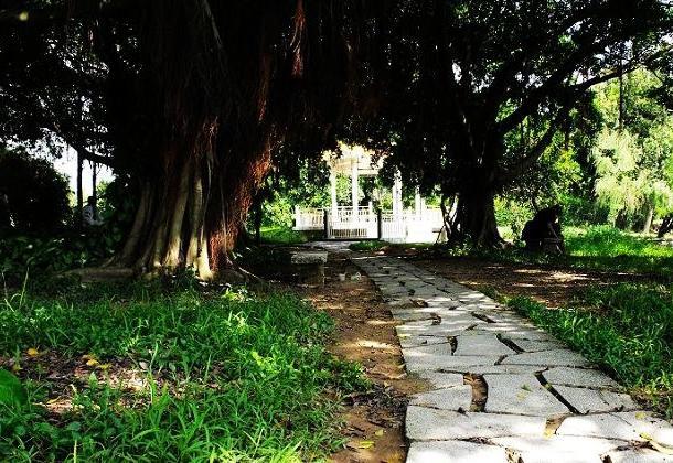 茂名市新湖公园 - 茂名旅游指南 - 茂名市住房和城乡